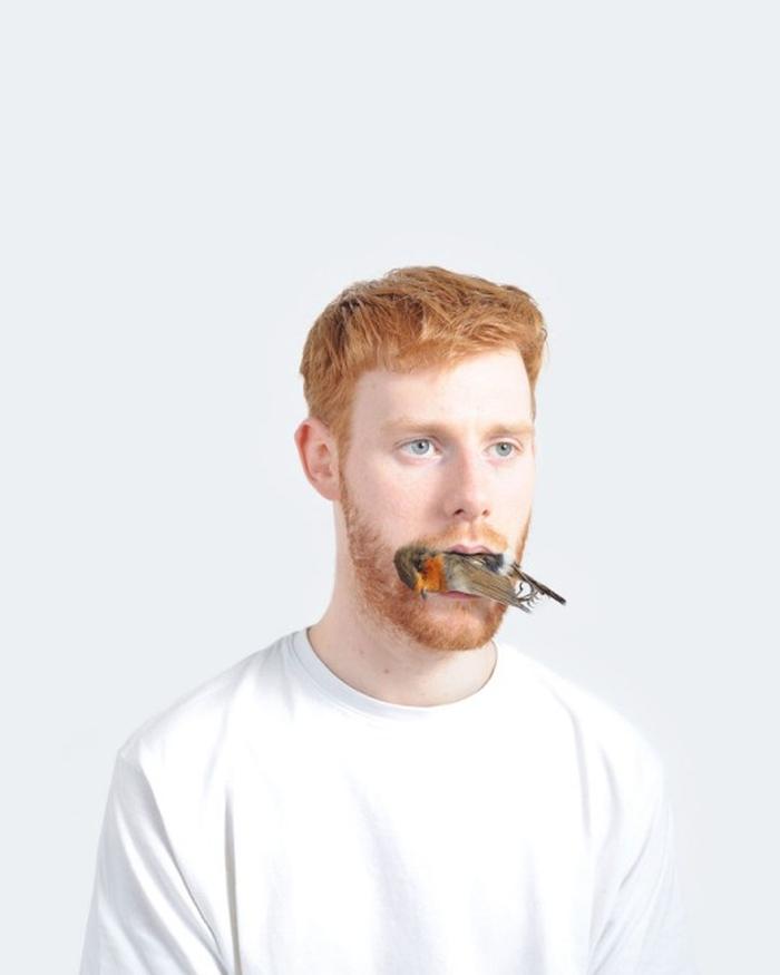 ginger5
