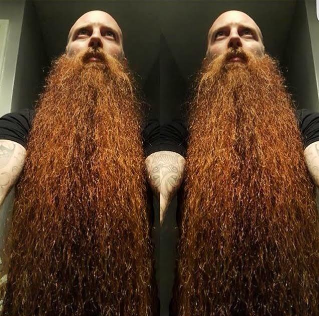 beardsub4