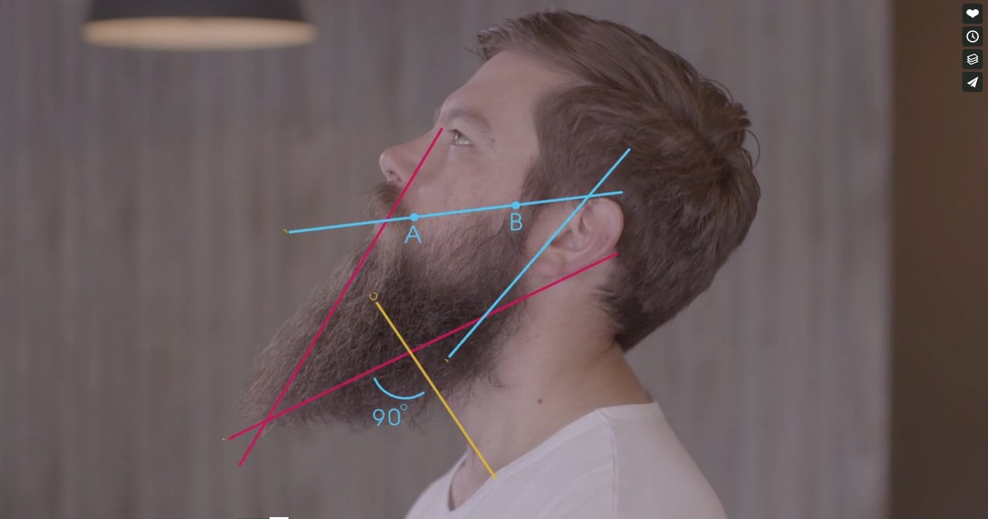 the_art_of_beard_grooming
